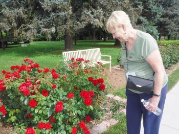 Image for Memorial Park Rose Garden