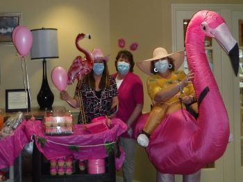 Image for Pink Flamingo Day